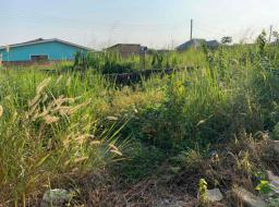 land for sale at Amasaman (Obeyeyie)