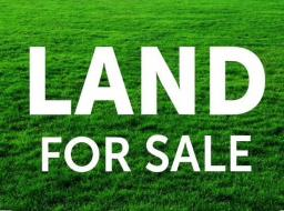 land for sale at Adjiringanor