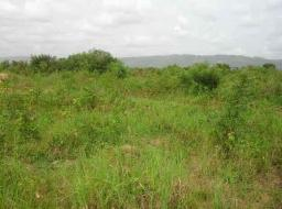 land for sale at Trade Fair