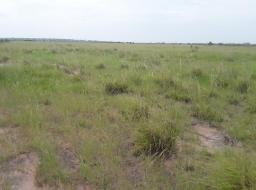 land for sale at PRAMPARM